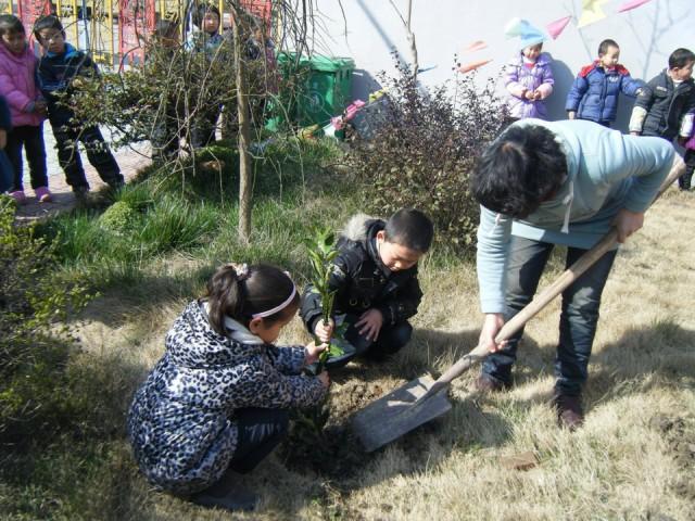 幼儿园植树节活动_金蔷薇幼儿园开展植树节活动