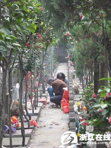 扫墓踏青大军昨日 井喷 杭州清明节超过百万人出行图片 72547 375x500