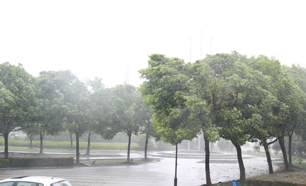 风雨交加 直击台风