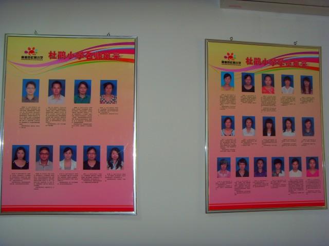 杜鹃小学名师工作室图片